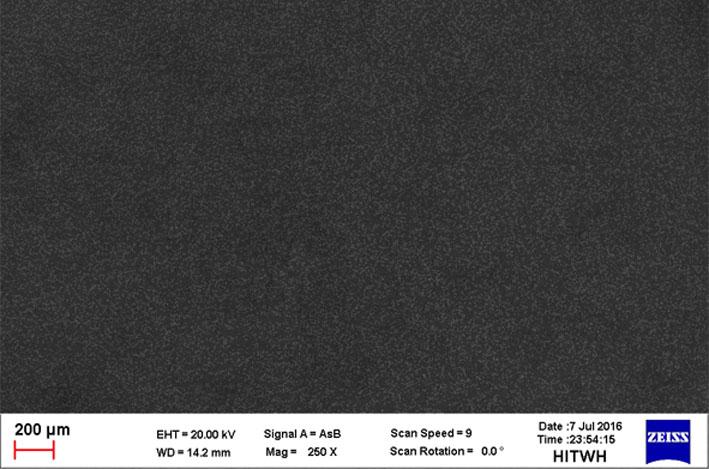 图中的亮度的高低表示钨原子的百分比含量的高低;图