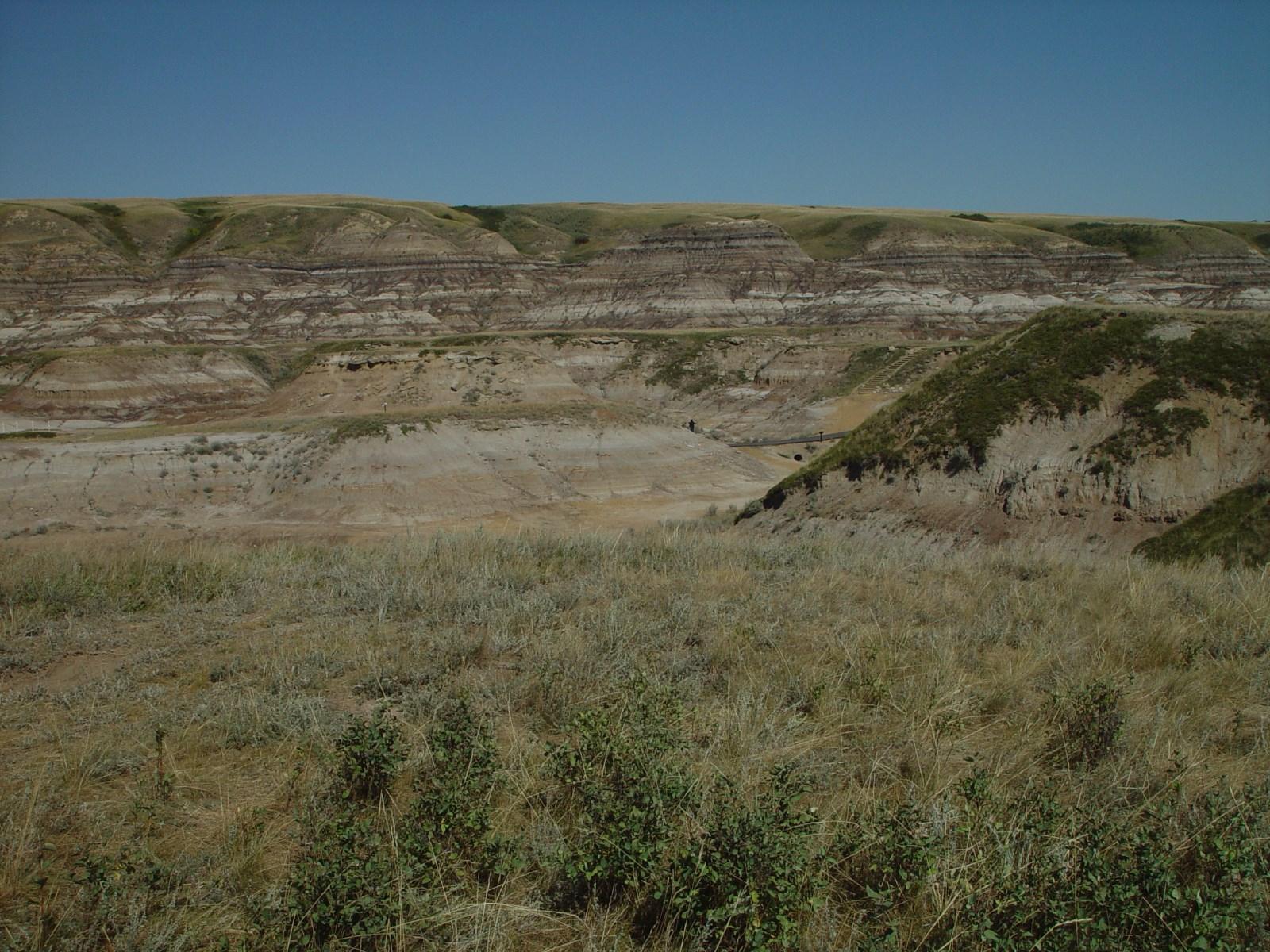 14 富含化石的白垩纪地层.jpg