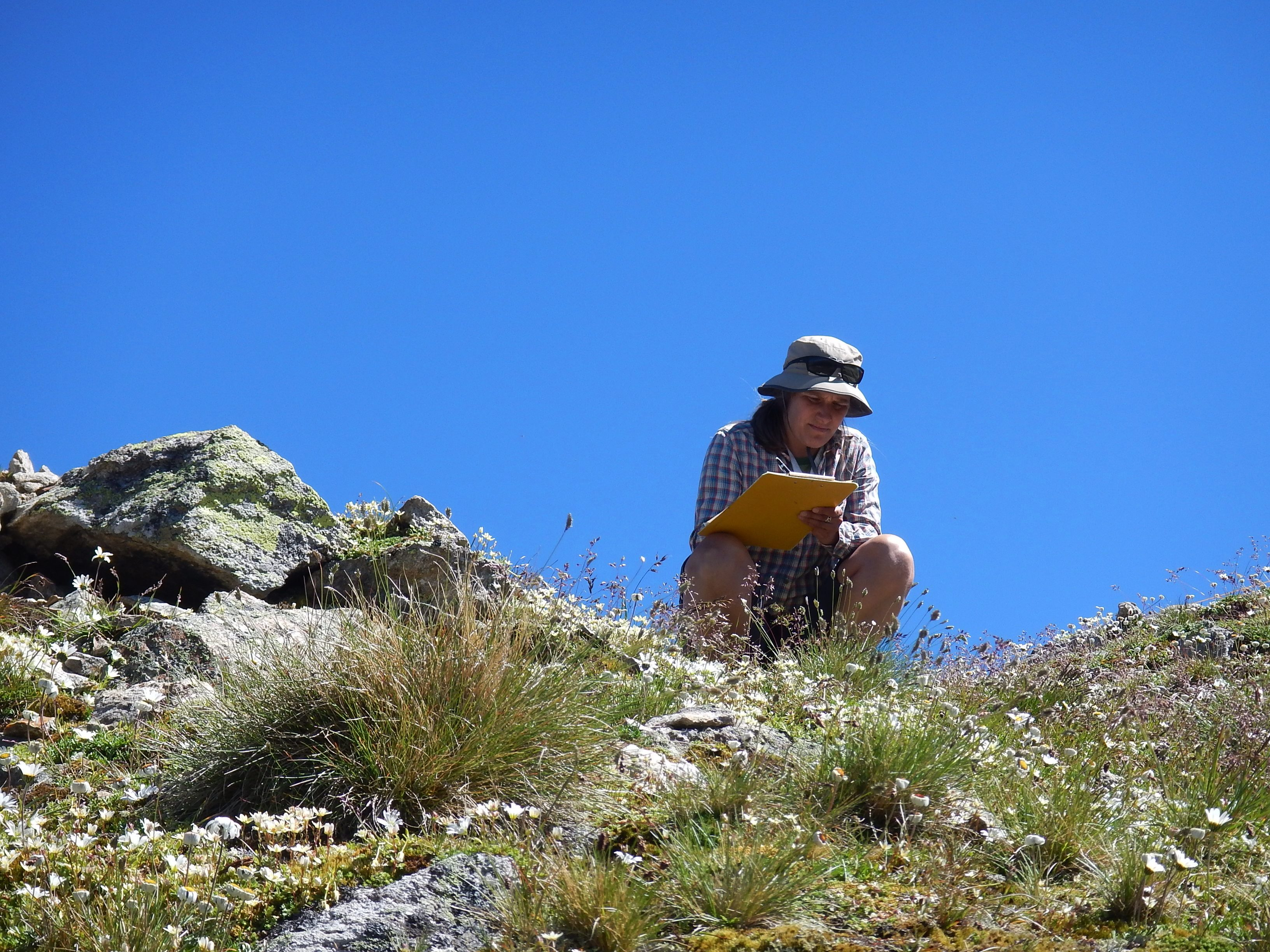 Photo 2:Sonja Wipf (Mountain Ecosystems research team at WSL-SLF and co-author.jpg