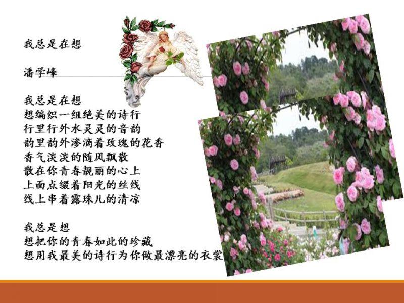 wozongshixiang.jpg