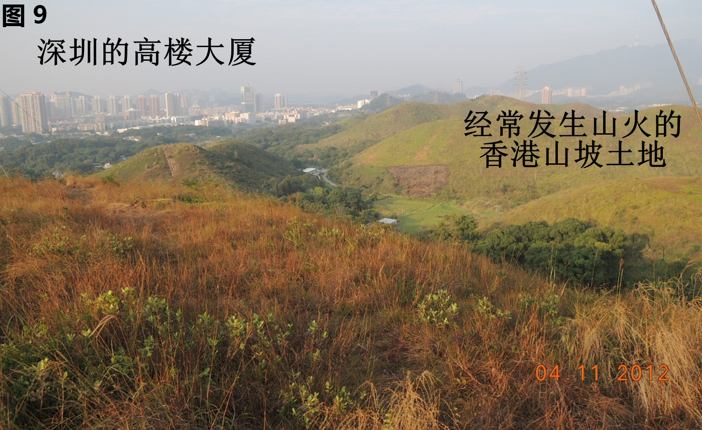 Hill-fire09.jpg