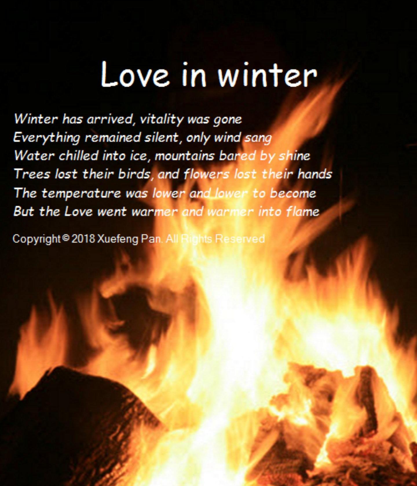 love in winter.jpg