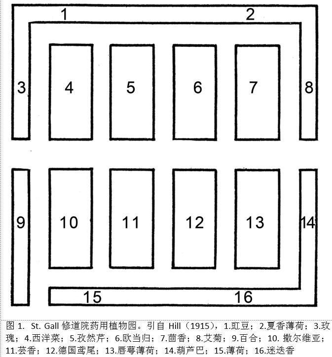 图1. St. Gall修道院药用植物园.jpg