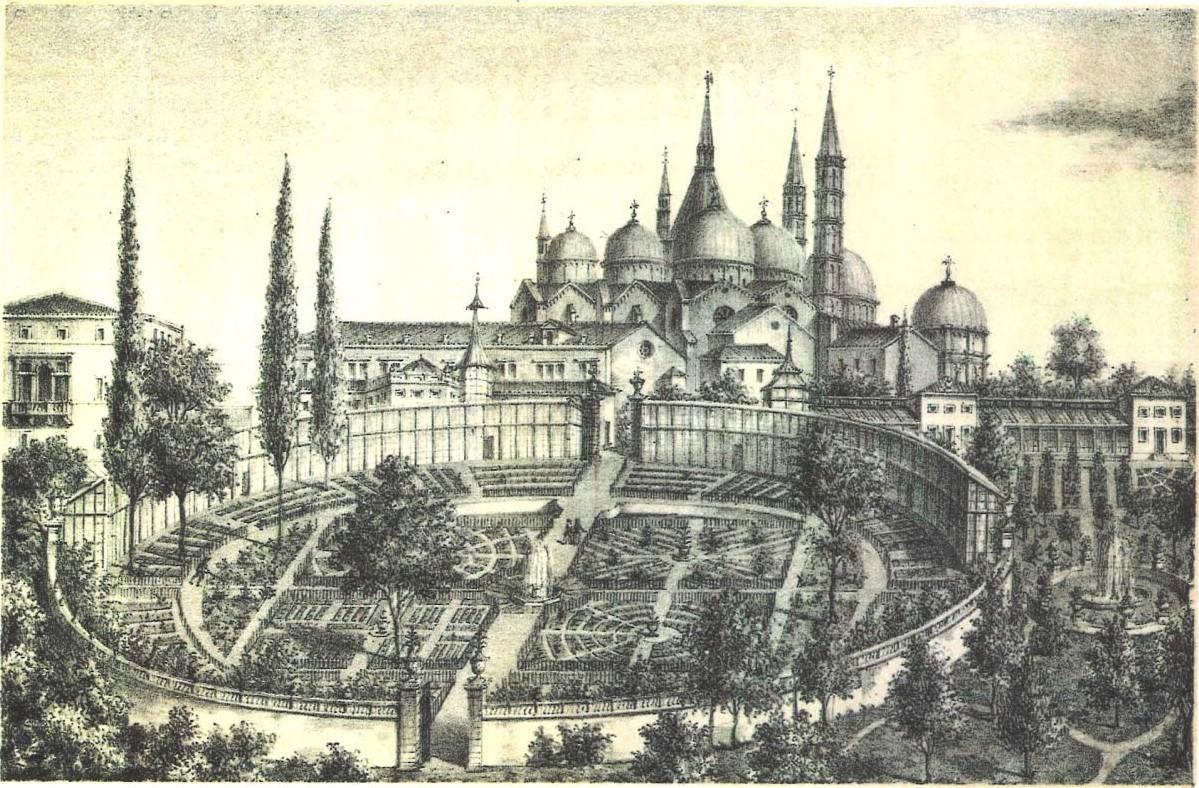 图2.1 建于16世纪中叶的帕多瓦植物园.jpg