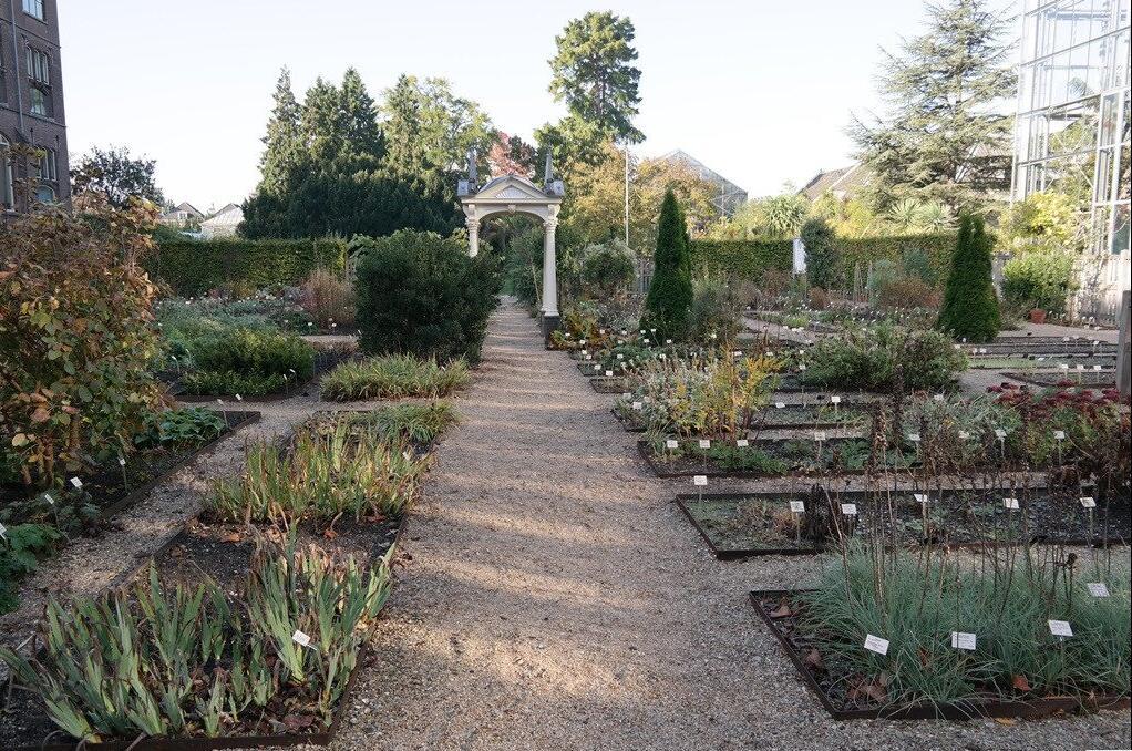 图2.3 莱顿植物园的植物景观布局.jpg