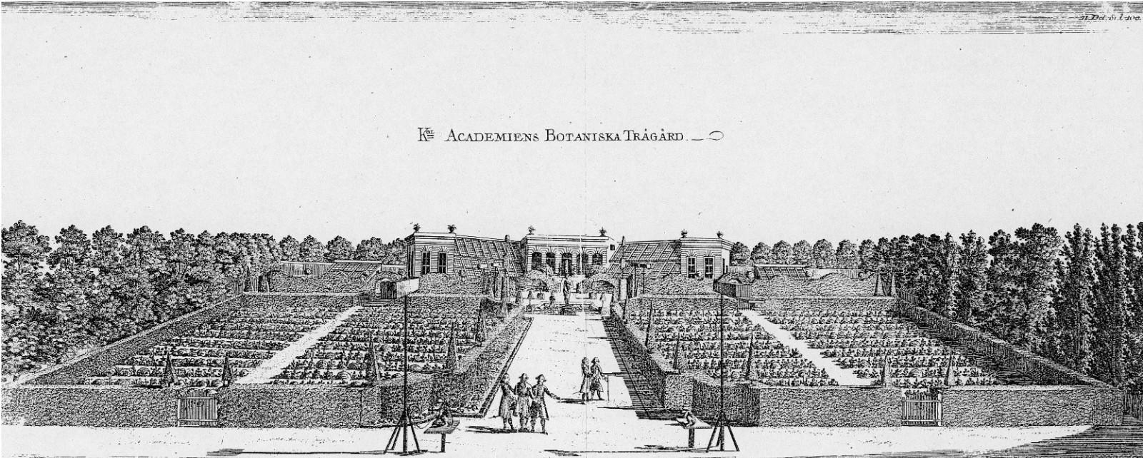 图3.1 1770年林奈重新设计Uppsala植物园布局.jpg