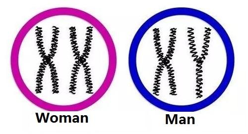 Man Vs Woman.jpg