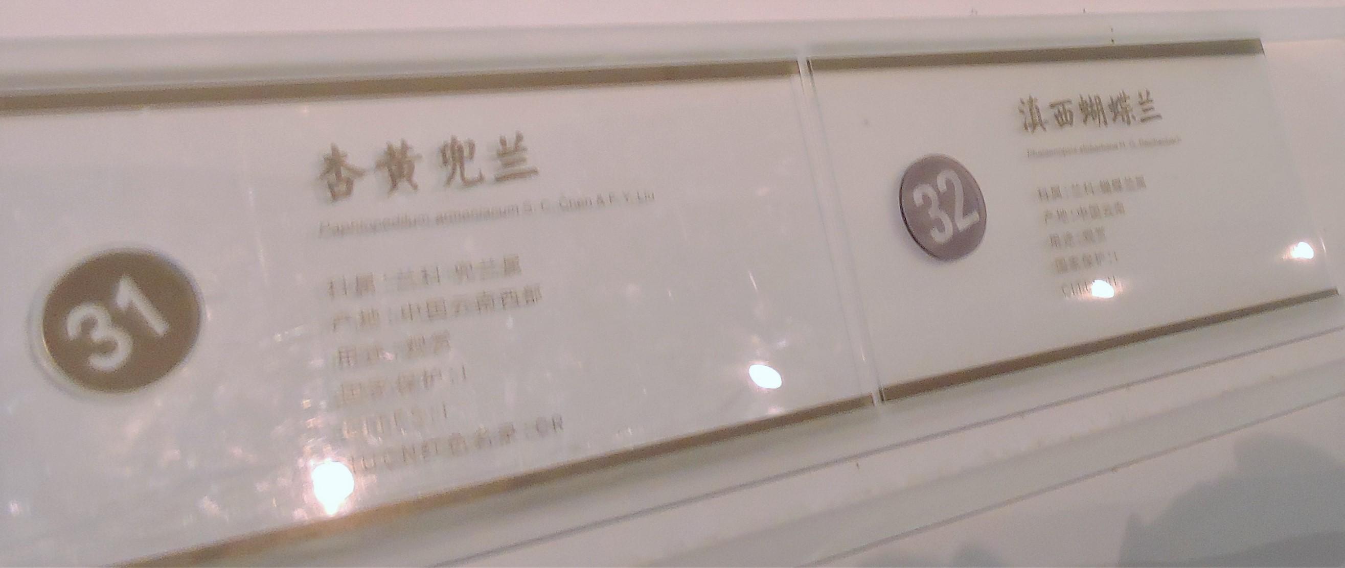 25 DSCN8846.jpg