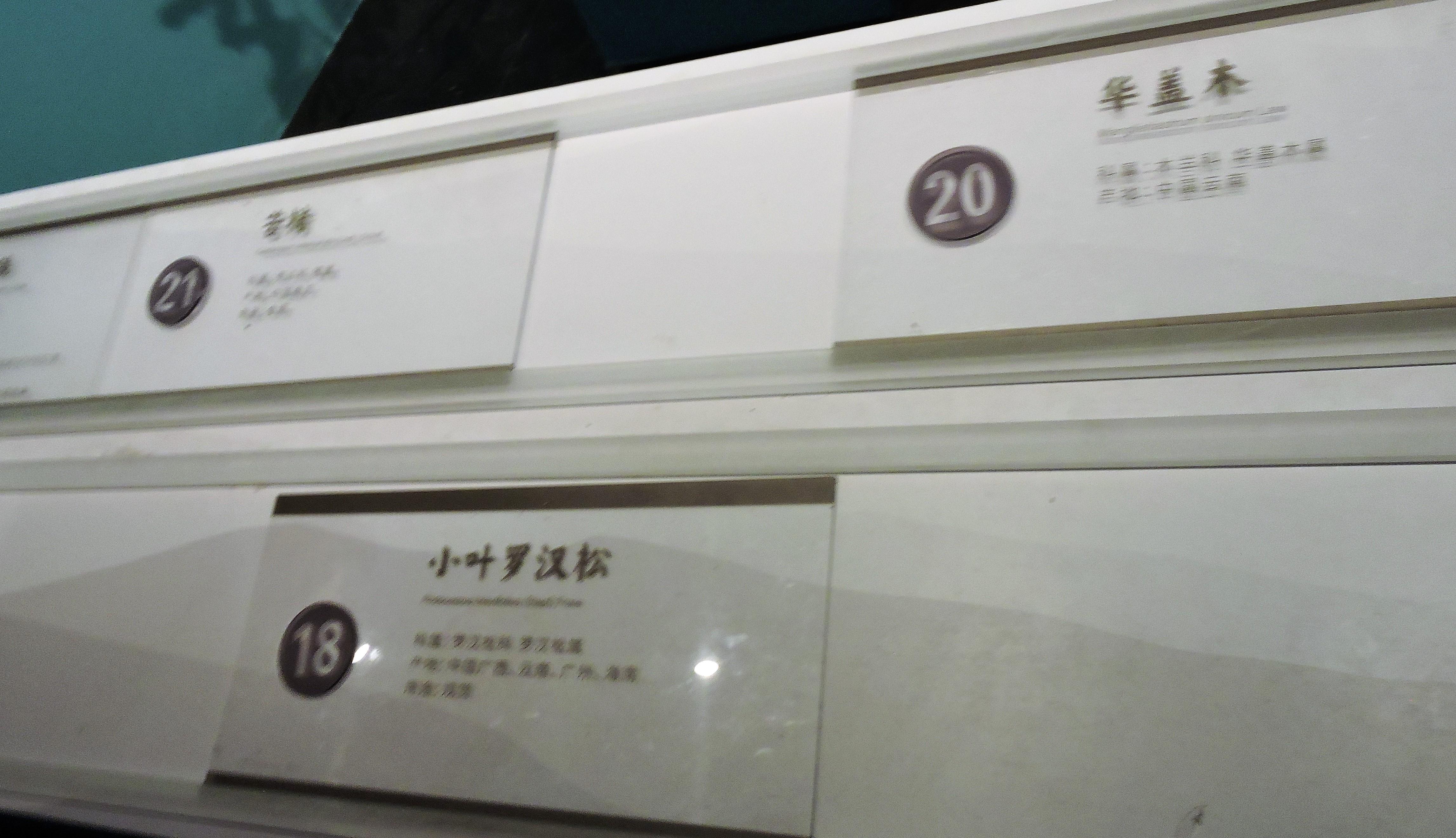 30 DSCN8851.JPG