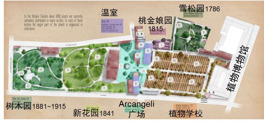 比萨大学植物园现状图.jpg