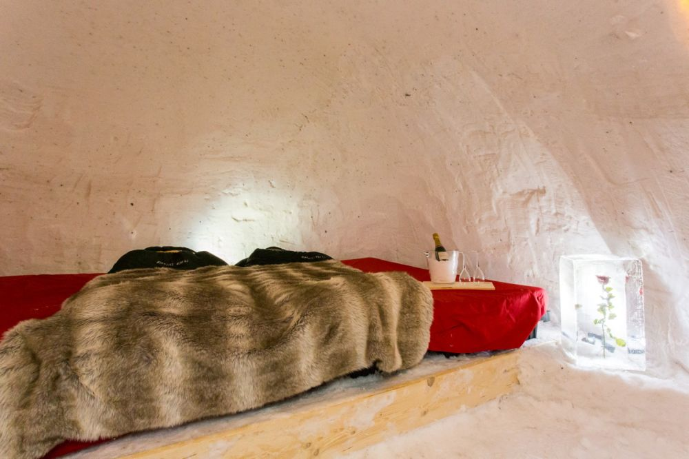 black-sheep-igloo.jpg