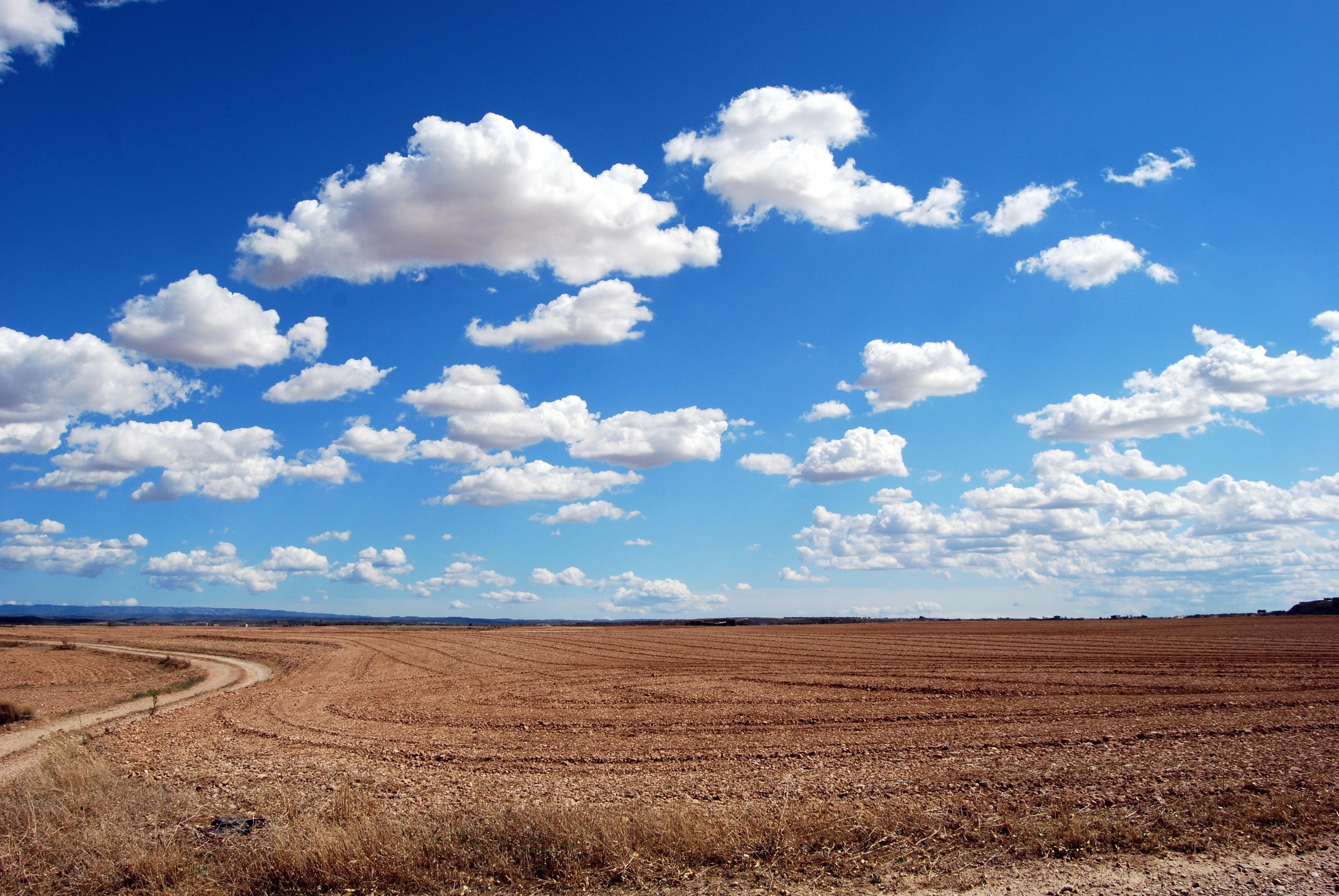 arid-bright-clouds-46160.jpg