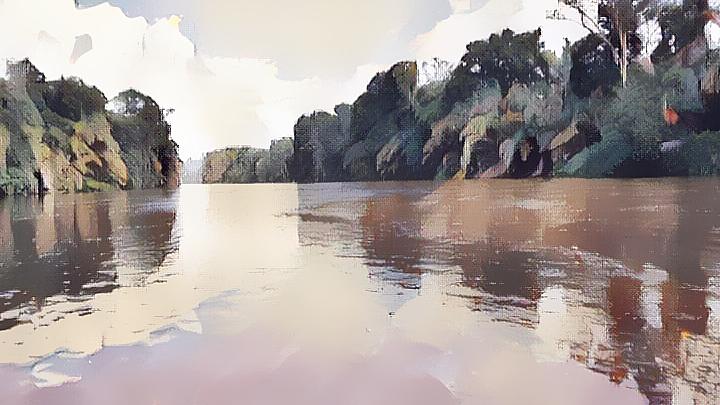 bird-swan-water-water-bird-135982957 (5) (1) (1) (1) (1) (1).png
