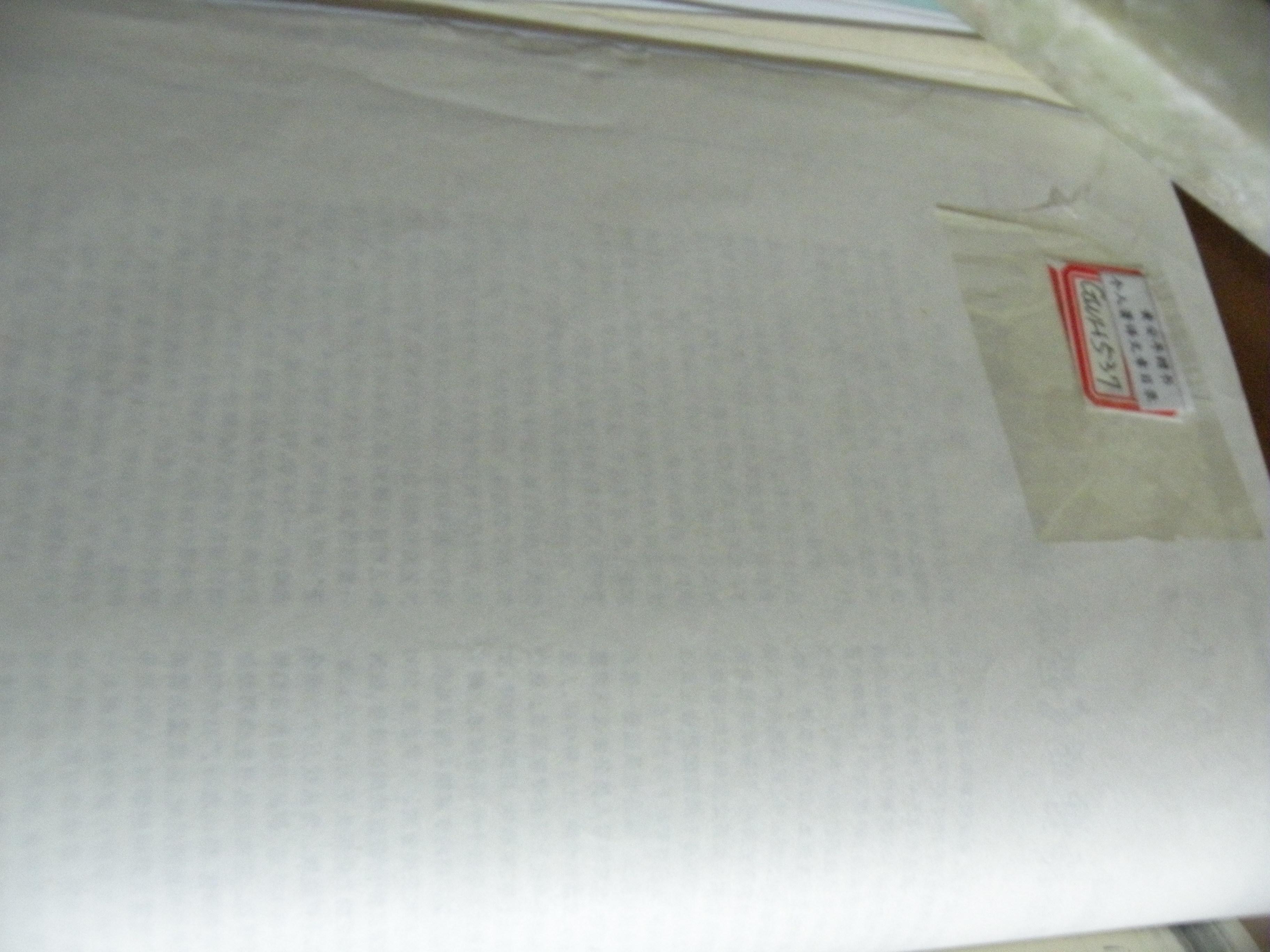 DSCN6271.JPG