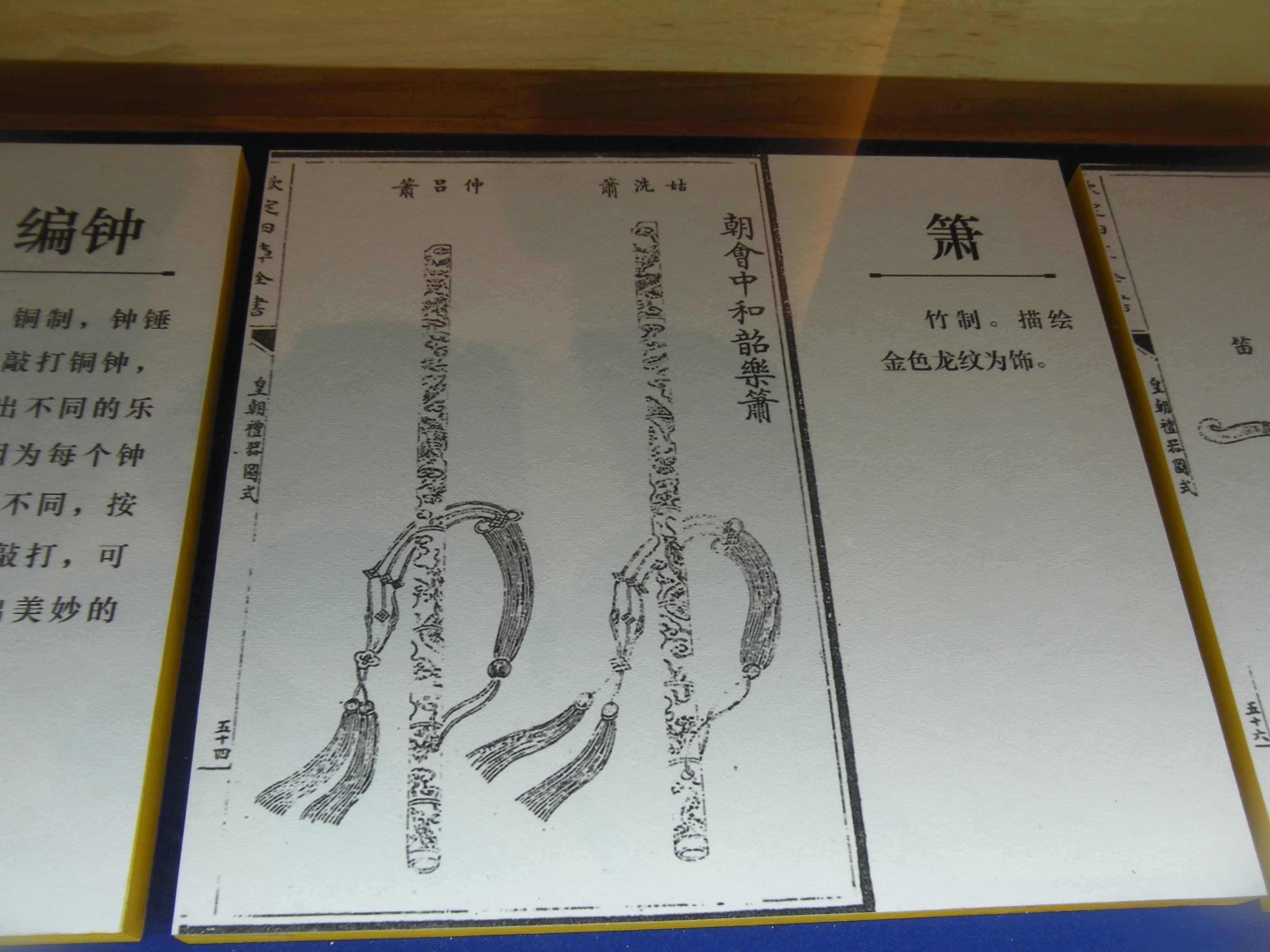 DSCN7305.JPG