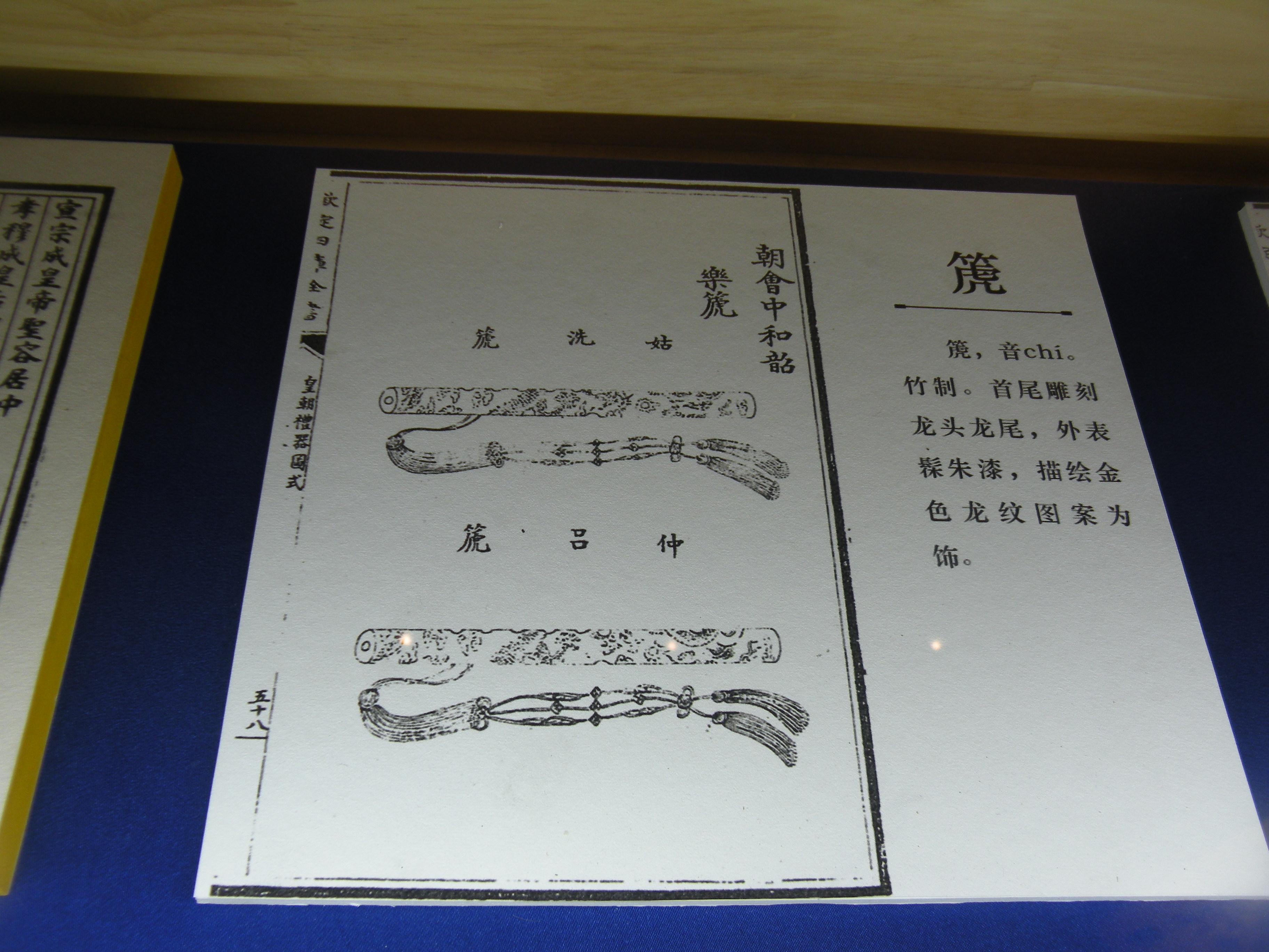 DSCN7313.JPG