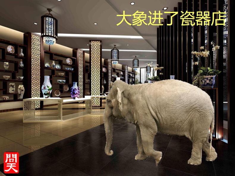 大象进了瓷器店.jpg