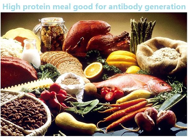 1200px-Good_Food_Display_-_NCI_Visuals_Online.jpg