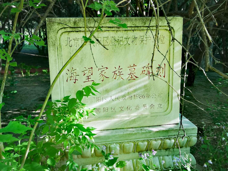 海望家族墓.jpg