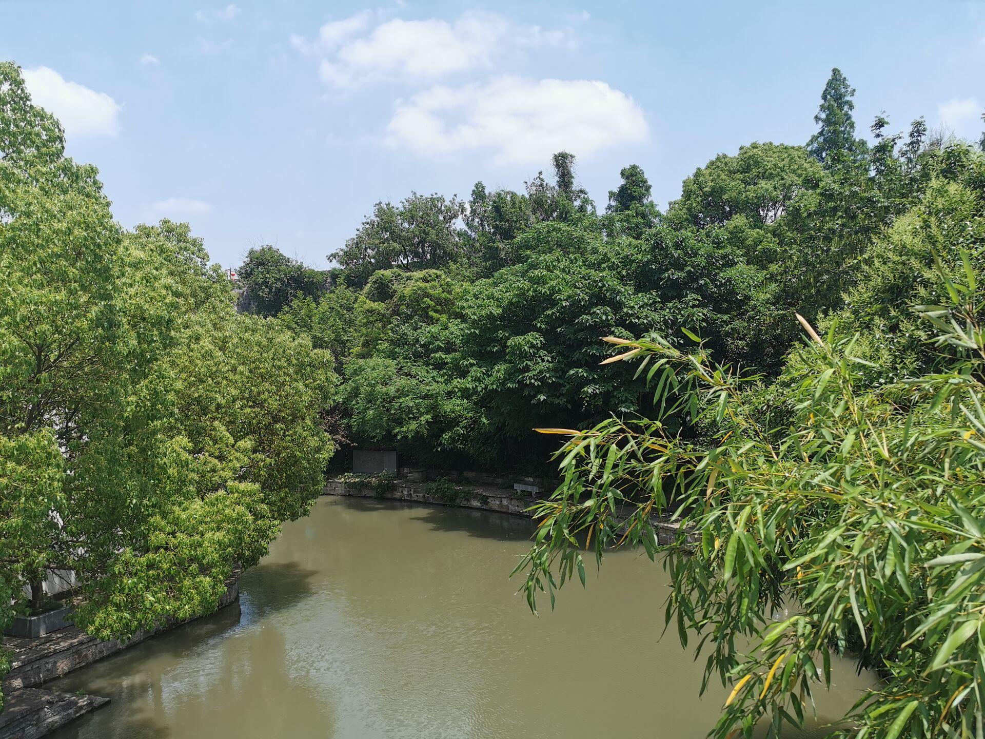 南京白鹭洲公园04.jpg