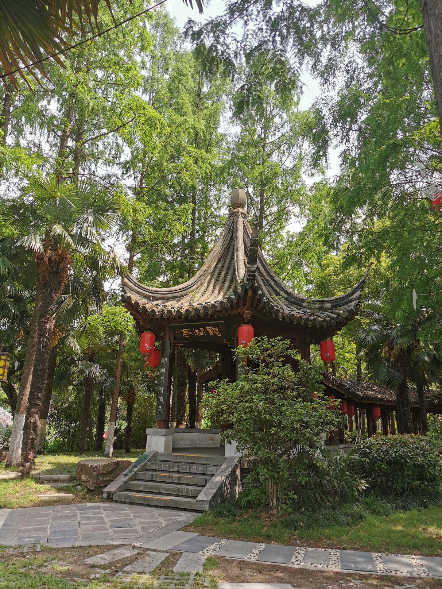 南京白鹭洲公园18.jpg