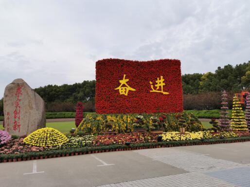 上大菊花文化节2019清晨02.jpg