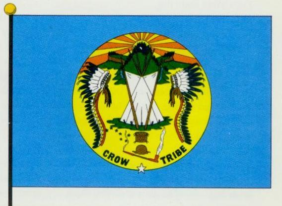 crowflag-bd.JPG