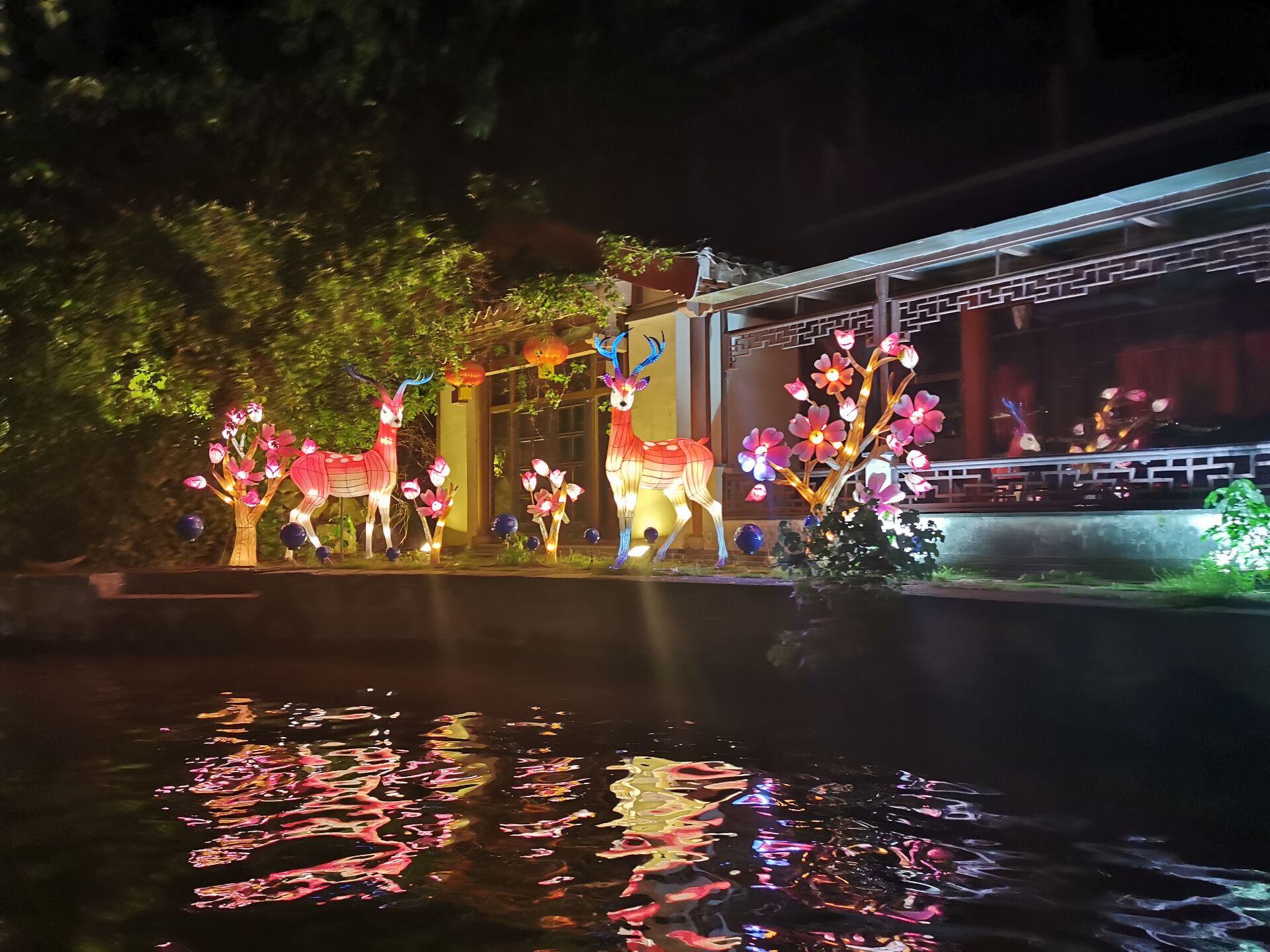 南京白鹭洲公园观灯17.jpg