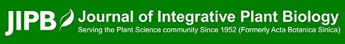JIPB Banner.jpg