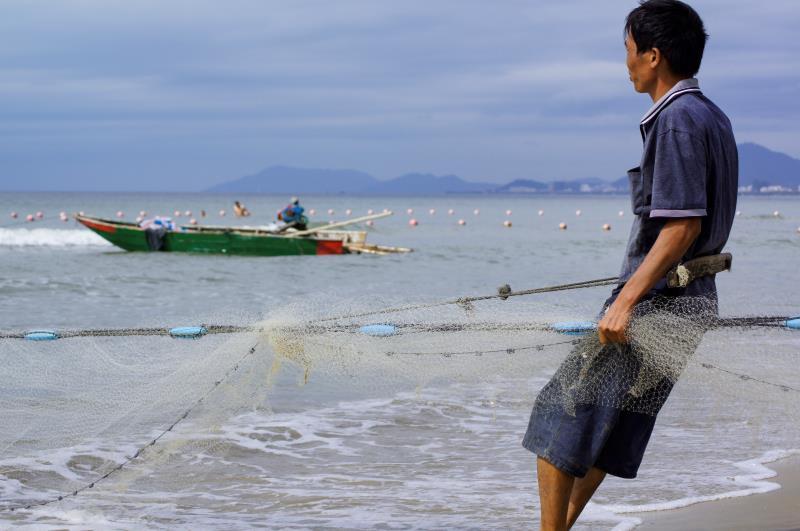 污染的海湾.jpg
