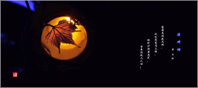 葡园月夜.jpg