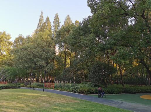 衡山公园重游新拍05.jpg