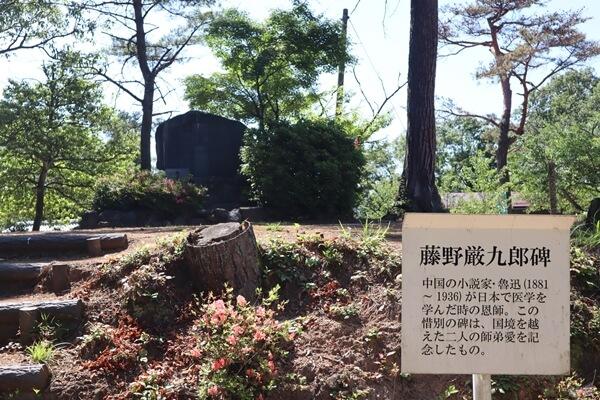 用 11 藤野厳九郎の石碑もあります。.jpg