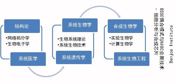 sysynbionet.jpg