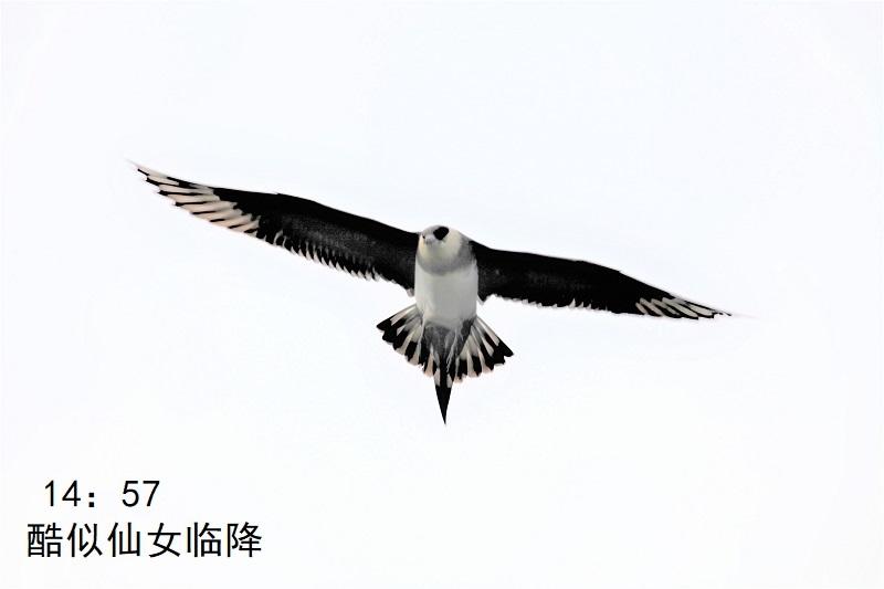 照片7IMG 024 - 副本.jpg