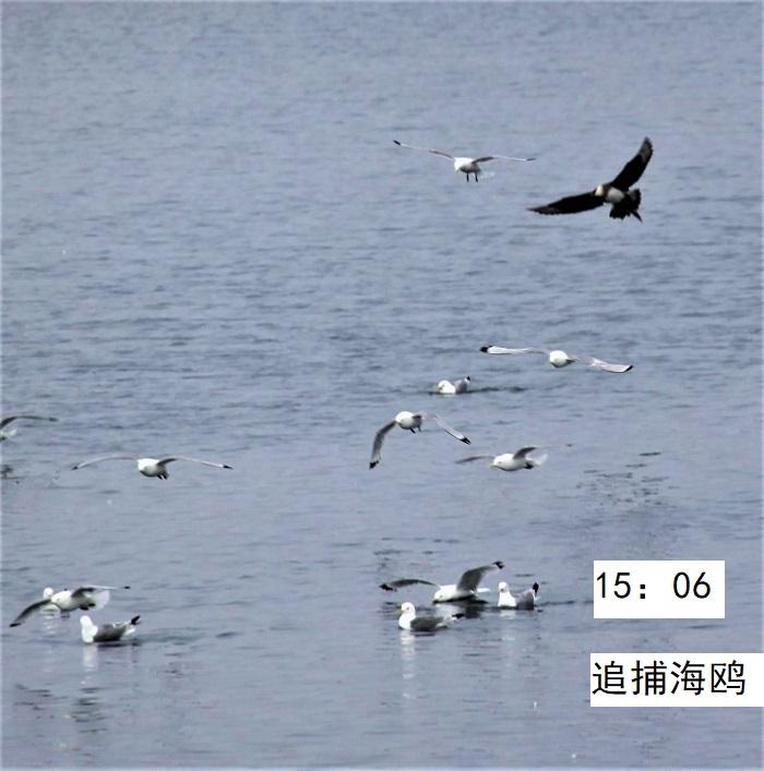 照片13IMG 171 - 副本.jpg
