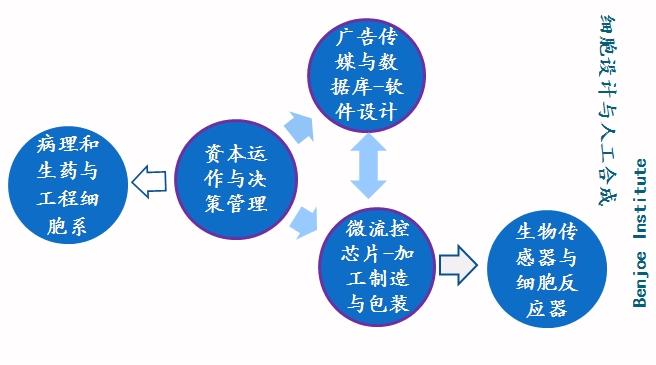 celldesign20.jpg