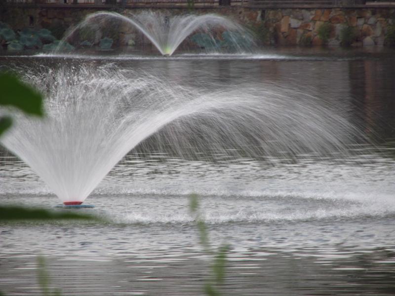 喷泉波 01 IMG_7922_副本.jpg
