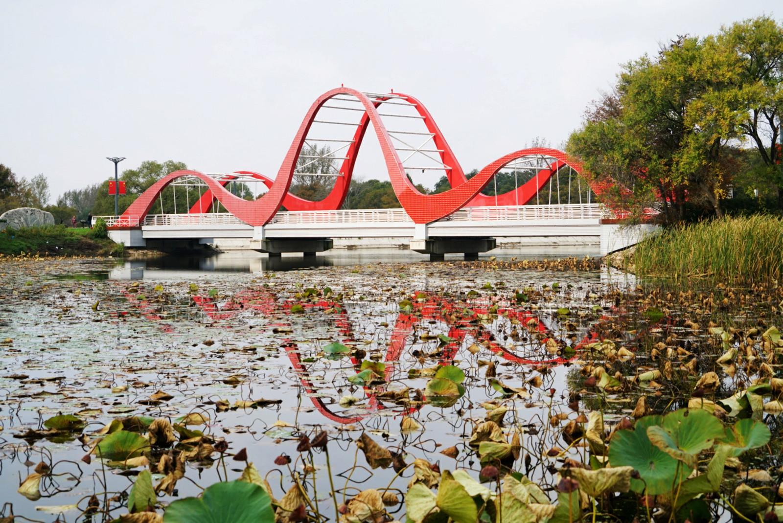 科学网红叶谷赏枫之旅(2):欢喜湖上的残荷