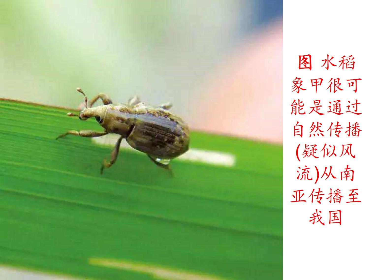图片29.jpg
