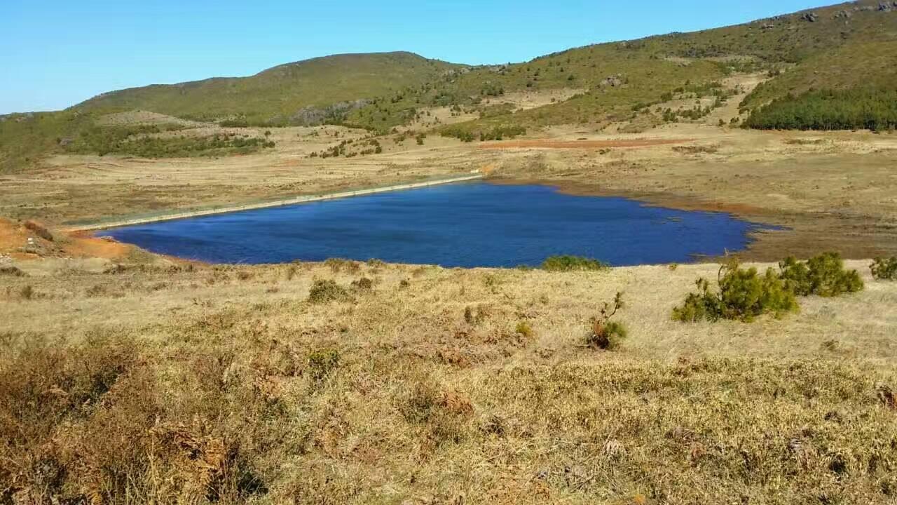 1 枯焦的草茬,坡地上森林灌丛,还有边那方湛蓝湛蓝的水库.jpg