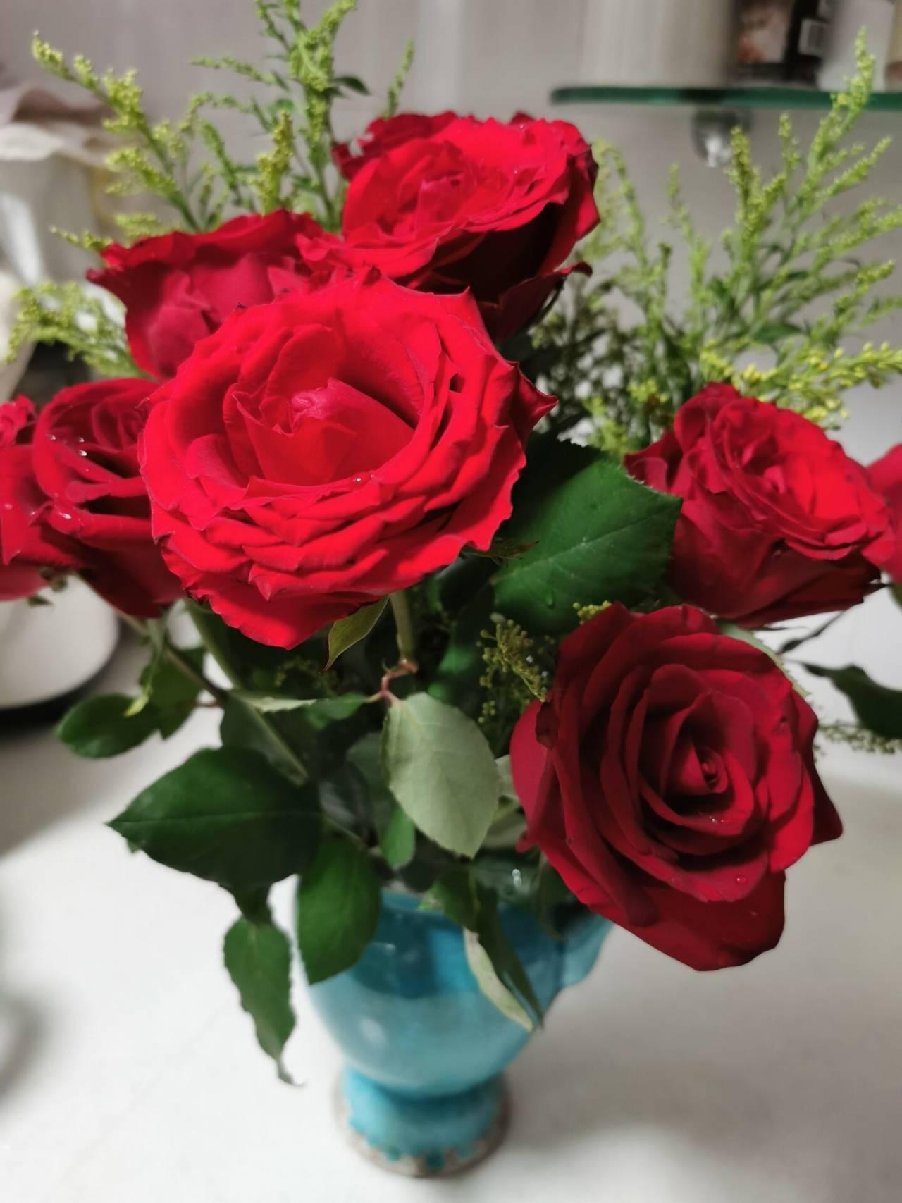 看花老眼之瓶中玫瑰8.jpg