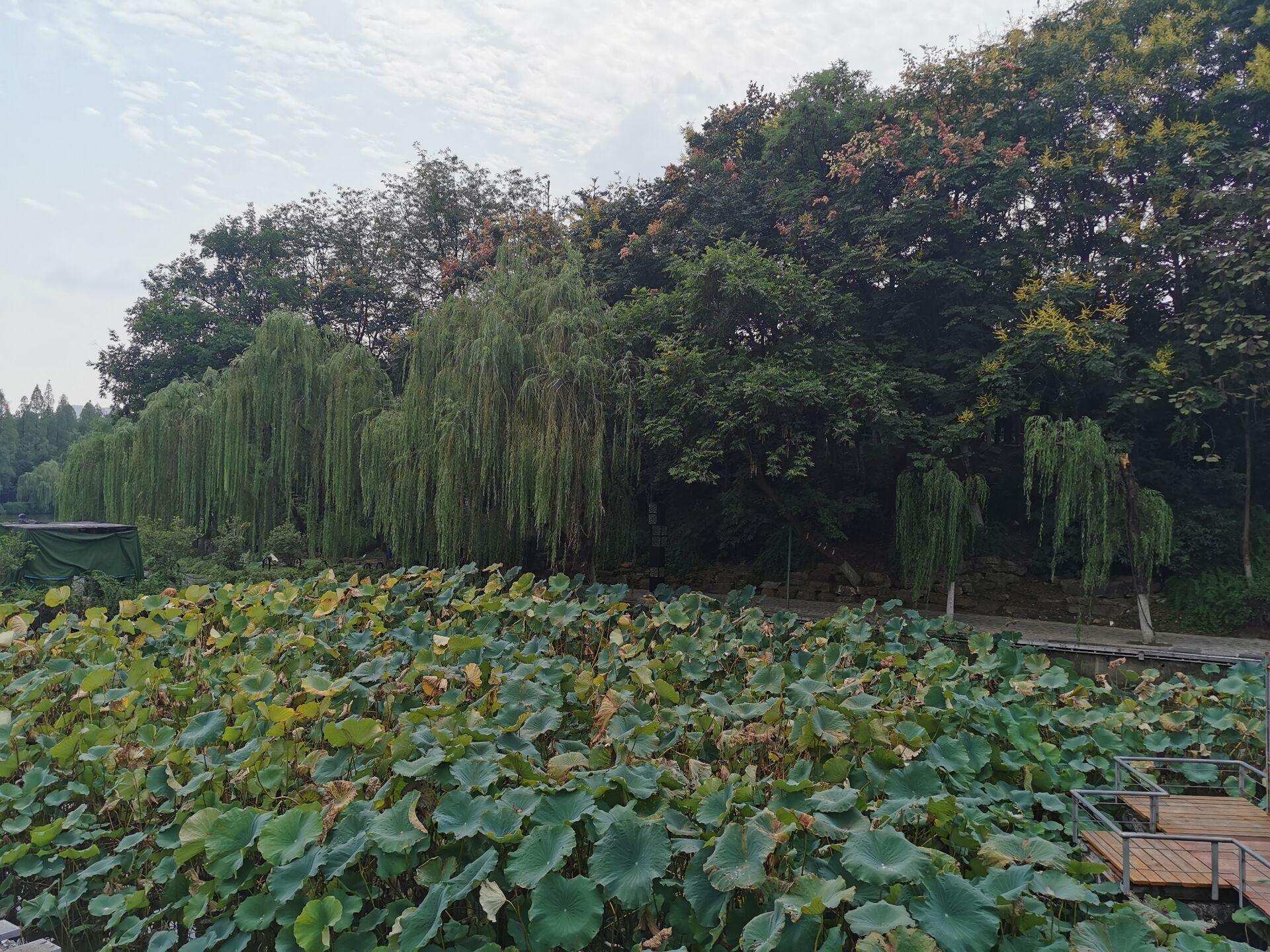合肥环城公园九狮广场3.jpg