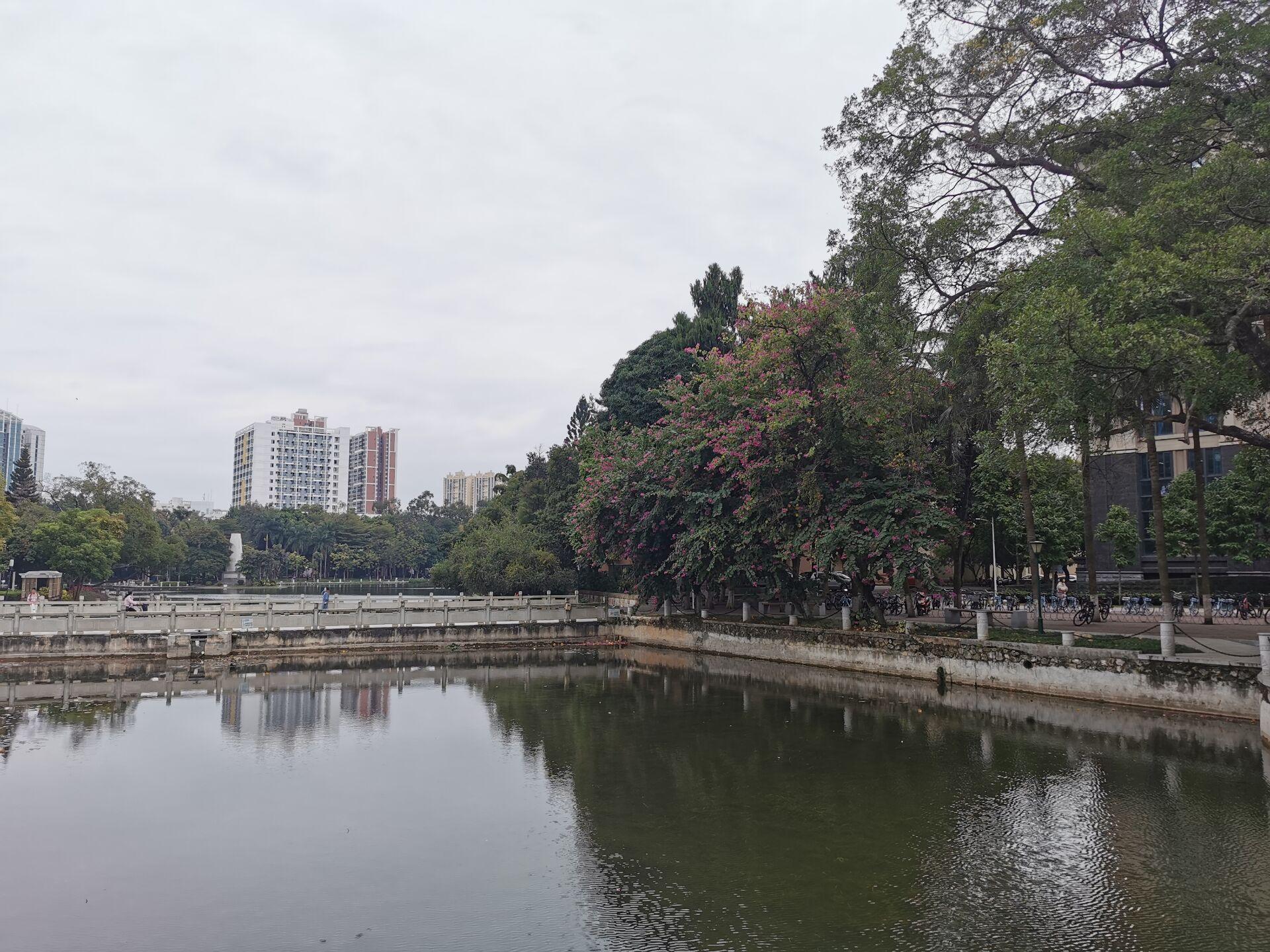 南宁广西大学校园之碧云湖02.jpg