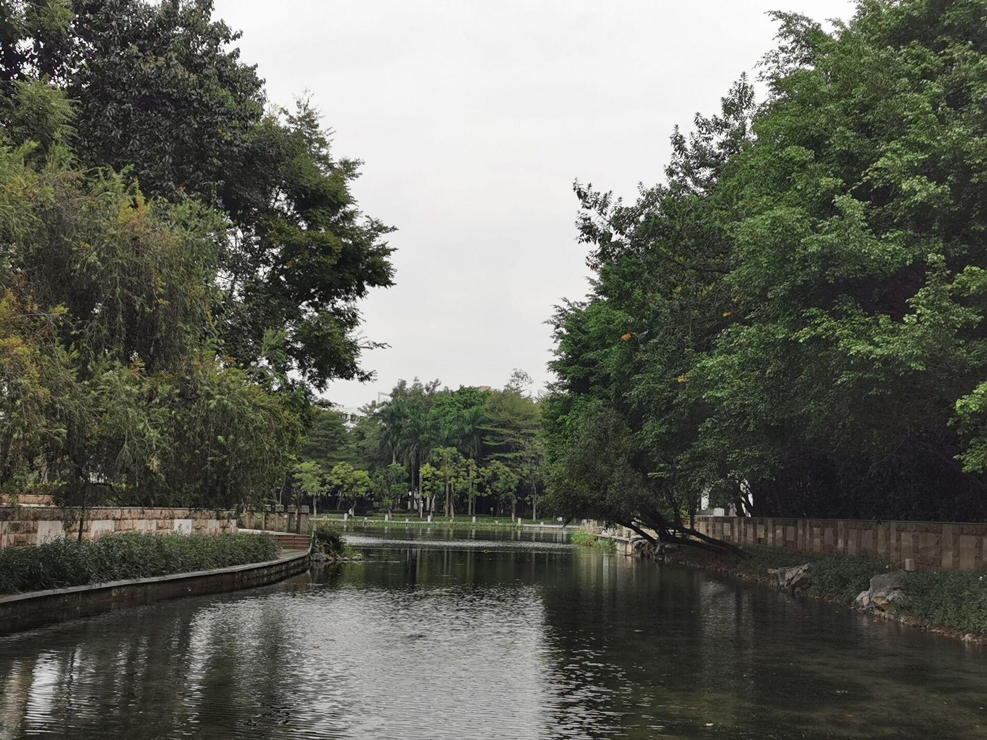 南宁广西大学校园之碧云湖06.jpg