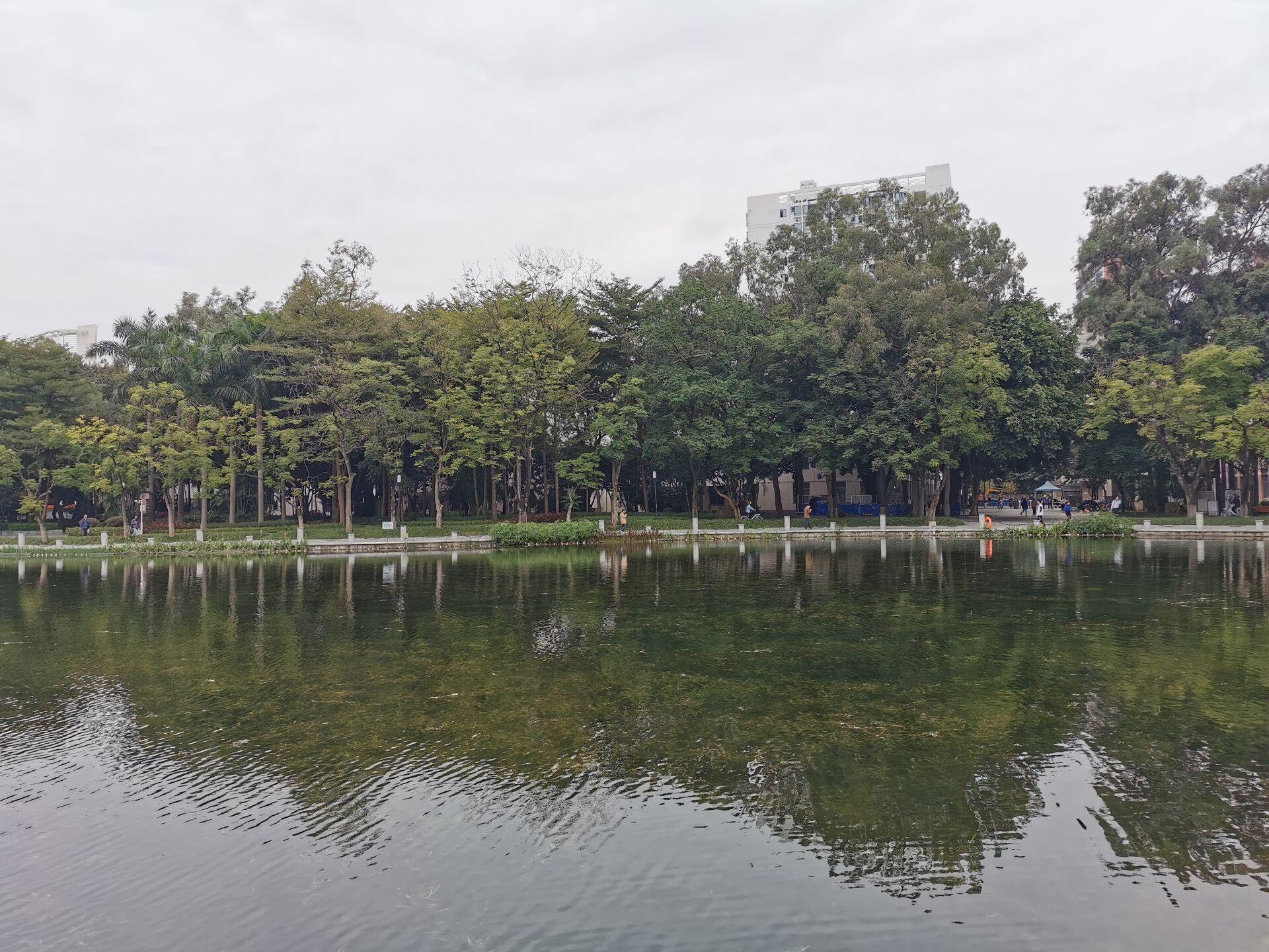 南宁广西大学校园之碧云湖07.jpg