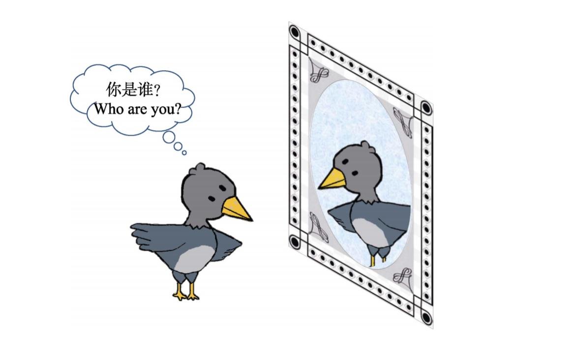 王琳 等 乌鸦照镜子.jpg