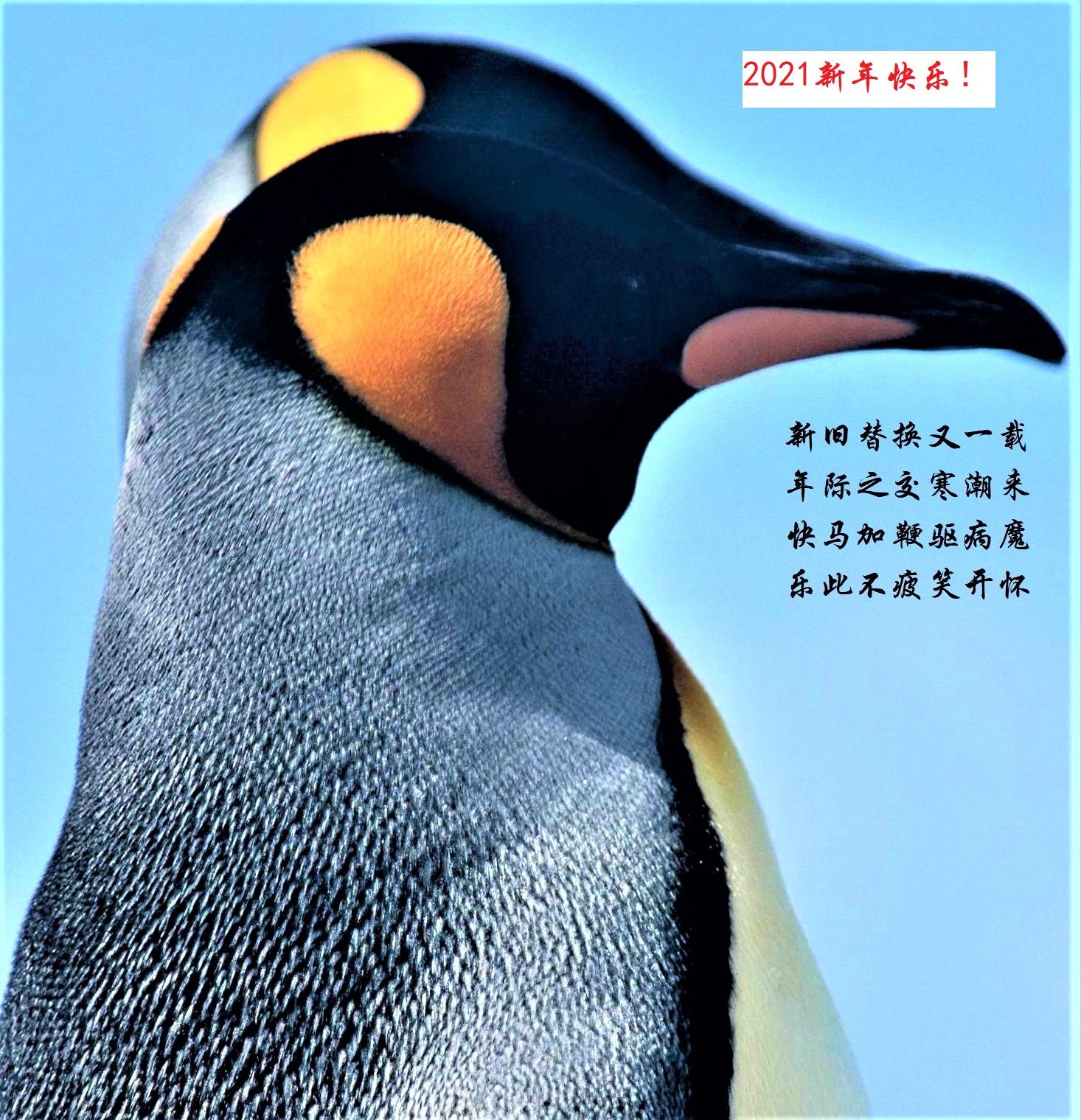 0000重新曝光 DSC_0207 - 副本 (2).jpg