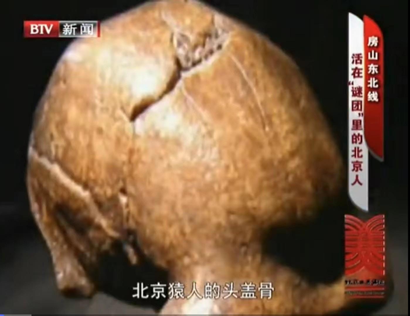 北京猿人错误《证据》4.jpg