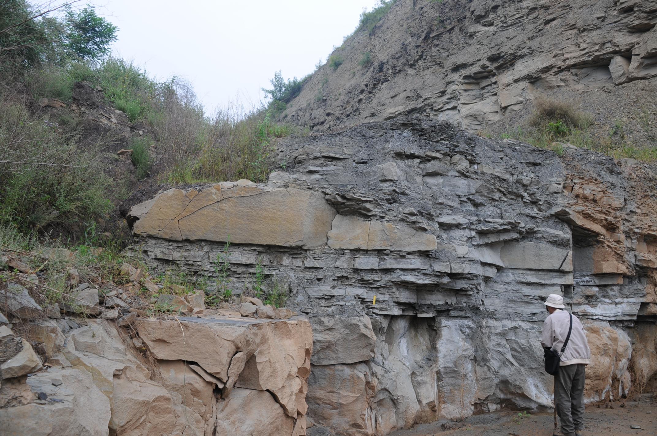 12   2013年9月乔老师在旬邑三水河剖面观察延长组长7砂质碎屑.jpg